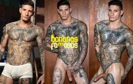 Machos tatuados pelados e dotados